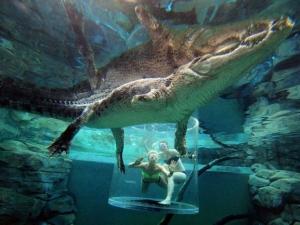 croc-extreme-09