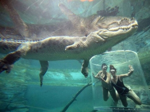croc-extreme-11
