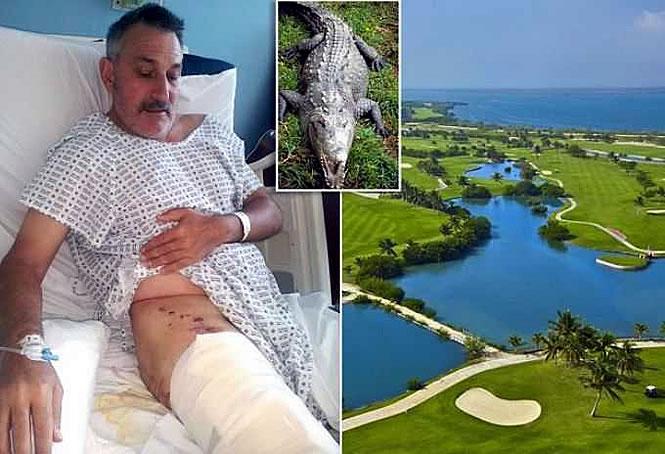 golf-croc