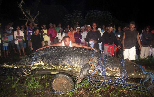 Крокодил, который съел 83 жителей деревни